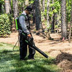 Photo of Eco-Friendly Electric Blower used by Blue Claw Landscaping